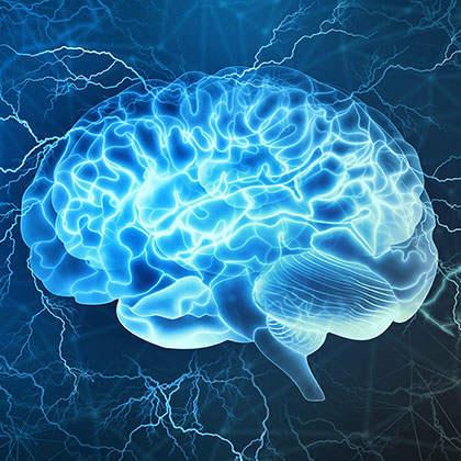 SEO意见就像大脑 - 每个人都有一个