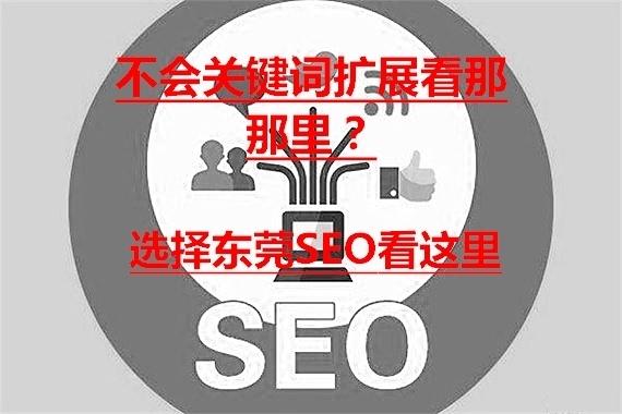 关键词扩展方法那里找,就在东莞SEO在学。