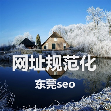 东莞seo干货,网址规范化问题如何解决