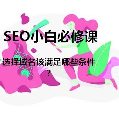 网站域名的选择满足哪些条件才最符合SEO